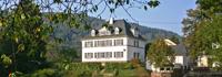 De Oude Pastorie, luxe vakantiehuis 16 personen met bioscoop, sauna in de Eifel, Duitsland